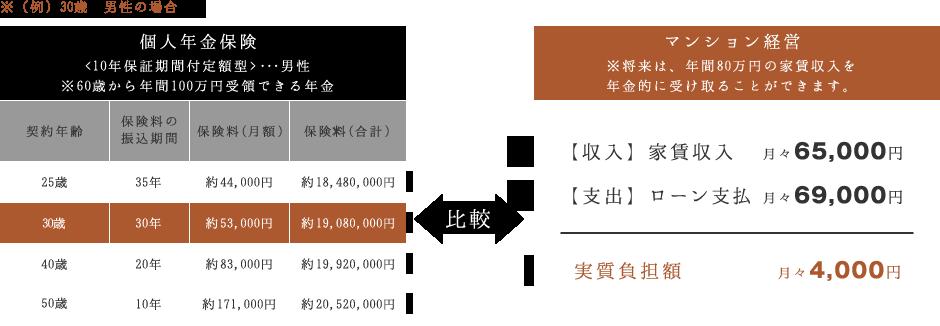 個人年金保険/マンション経営の比較図